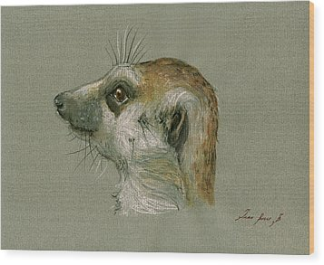 Meerkat Or Suricate Painting Wood Print by Juan  Bosco