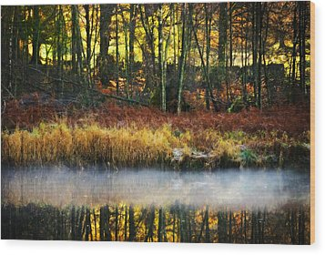 Mist On The Water Wood Print by Meirion Matthias