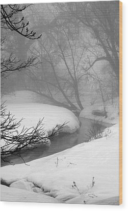 Misty Morning Wood Print by Julie Lueders