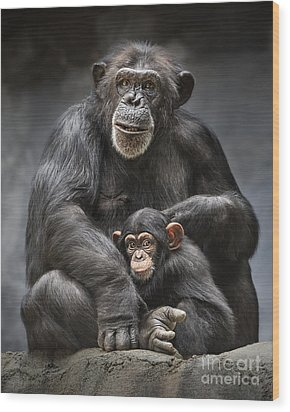 Mom And Baby Wood Print by Jamie Pham
