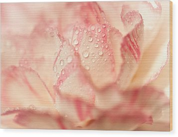 Moning Freshness. Natural Watercolor. Touch Of Japanese Style Wood Print by Jenny Rainbow