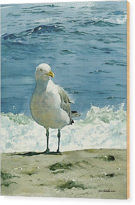 Montauk Gull Wood Print by Tom Hedderich