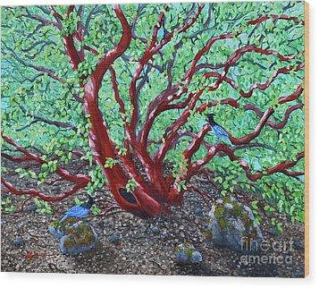 Morning Manzanita Wood Print by Laura Iverson