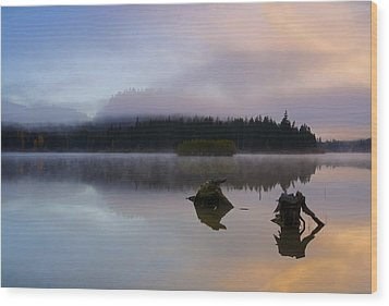 Morning Mist Burning Wood Print by Mike  Dawson