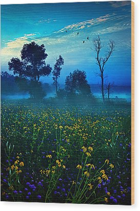 Morning Song Wood Print by Phil Koch