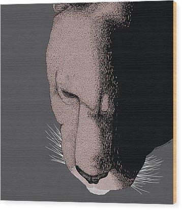 Mountain Lion Wood Print by Karl Addison