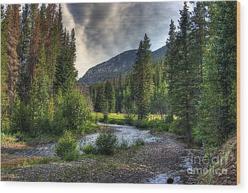 Mountain Stream 4 Wood Print by Pete Hellmann