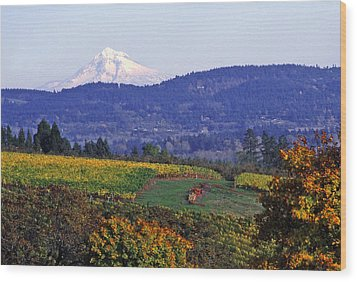 Mt. Hood From A Dundee Hills Vineyard Wood Print by Margaret Hood