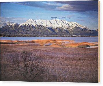 Mt. Timpanogos And Utah Lake Wood Print by Utah Images