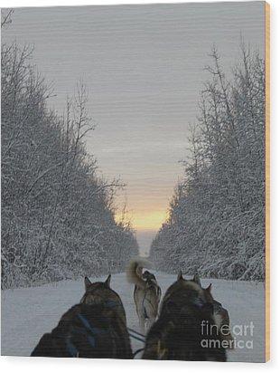 Mushing Into The Sunset Wood Print by Tanja Hymel