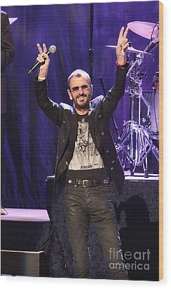 Musician Ringo Starr  Wood Print by Concert Photos