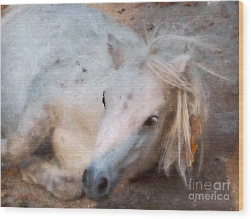 My Little Horse Wood Print by Angela Doelling AD DESIGN Photo and PhotoArt