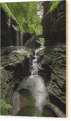 Mystic Falls Wood Print by Nick  Shirghio