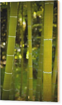 Mystical Bamboo Wood Print by Sebastian Musial