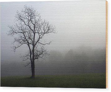Mysty Tree Wood Print by Marty Koch