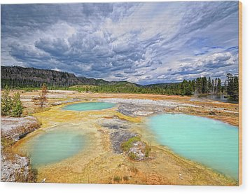 Natural Beauty Wood Print by Philippe Sainte-Laudy Photography