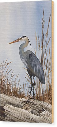 Nature's Gentle Beauty Wood Print by James Williamson