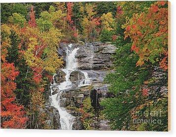 New Hampshire Waterfall Wood Print by Betty LaRue