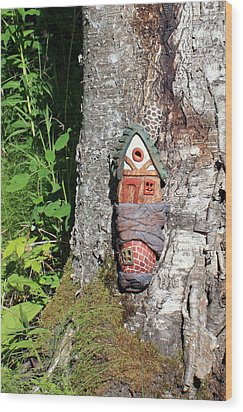 No Place Like Gnome Home I Wood Print by Eric Knowlton