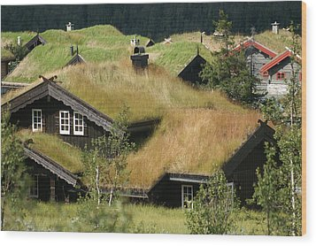 Norwegian Grass Roofs Wood Print by Jessica Rose