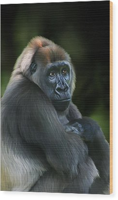 Nyango Wood Print by Julie L Hoddinott