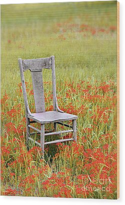 Old Chair In Wildflowers Wood Print by Jill Battaglia