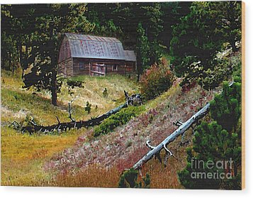 Old Horse Barn In The Draw Wood Print by Terril Heilman