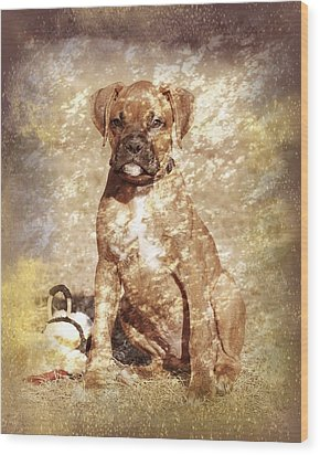 Old Time Boxer Portrait Wood Print by Angie Tirado