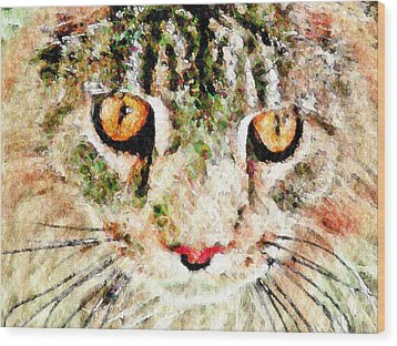 One Cool Cat Wood Print by Terry Mulligan