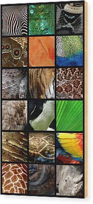 One Day At The Zoo Wood Print by Michelle Calkins