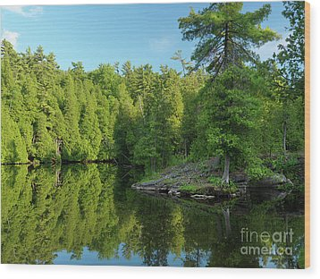 Ontario Nature Scenery Wood Print by Oleksiy Maksymenko