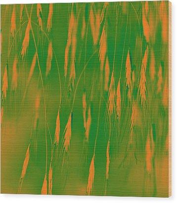 Orange Grass Spikes Wood Print by Heiko Koehrer-Wagner