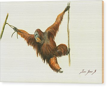 Orangutan Wood Print by Juan Bosco