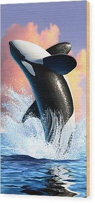Orca 1 Wood Print by Jerry LoFaro