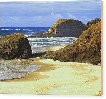 Oregon Coast 18 Wood Print by Marty Koch