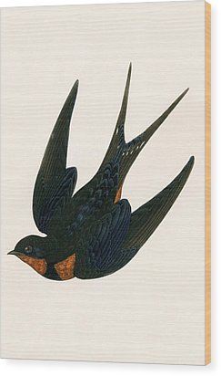 Oriental Chimney Swallow Wood Print by English School