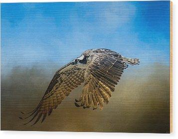 Osprey Over Pickwick Wood Print by Jai Johnson