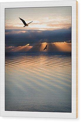 Ospreys Wood Print by Mal Bray