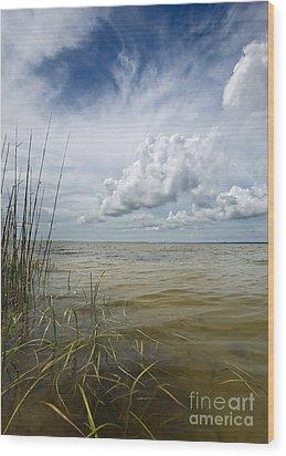 Outer Banks Coastline Wood Print by Matt Tilghman