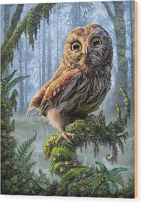 Owl Perch Wood Print by Phil Jaeger