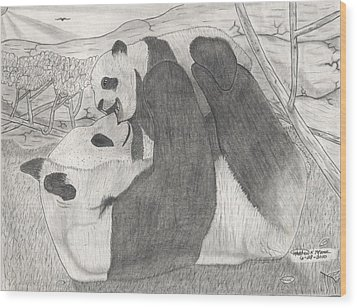 Panda Family Wood Print by Matthew Moore