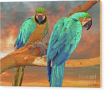Parrots At Sunset Wood Print by Michael Durst