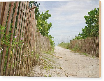 Path To The Beach Wood Print by Matt Tilghman