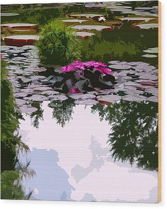 Patterns Of Peace Wood Print by John Lautermilch
