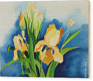 Peach Irises Wood Print by Janis Grau