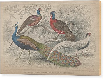 Peacocks Wood Print by Oliver Goldsmith