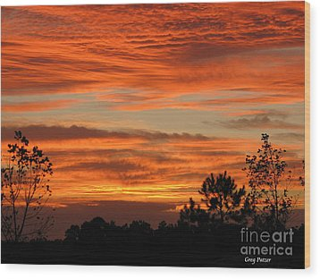 Perfection Wood Print by Greg Patzer