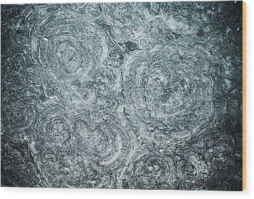 Petrified Sea Floor Wood Print by Ryan Kelly