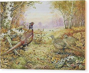 Pheasants In Woodland Wood Print by Carl Donner