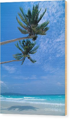 Philippines, Boracay Isla Wood Print by William Waterfall - Printscapes